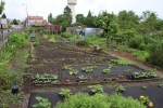 visite jardins familiaux - 05 06 2019