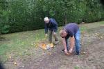 Récolte pommes Jardin des Coquelicots - 25 08 2020