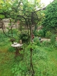 RDV aux jardins Coeur de chats - 05 06 2021